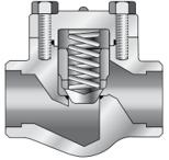 Cryogenic Piston Check Valve_Forged Steel