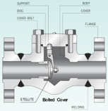 Cryogenic Swing Check Valve_Forged Steel